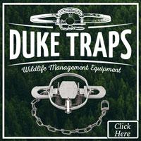 Duke Replacement Coil Springs (Pair) NSCDRCS